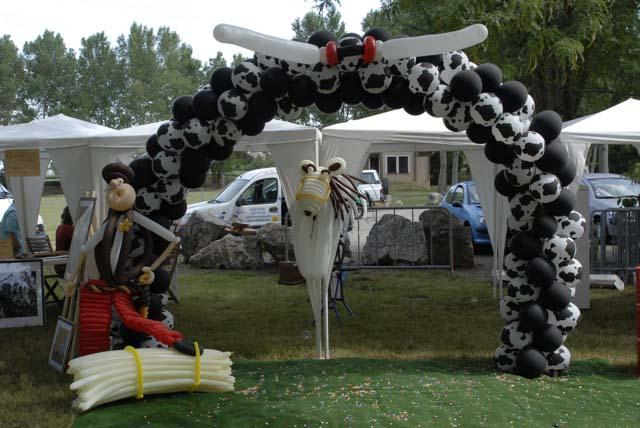 Au Royaume d'Anniversalus : clown magie sculpteur ballons