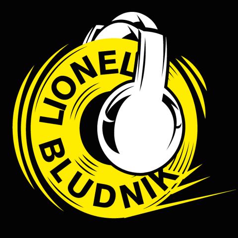 LIONEL BLUDNIK : ANIMATION DJ - SON & LUMIERES