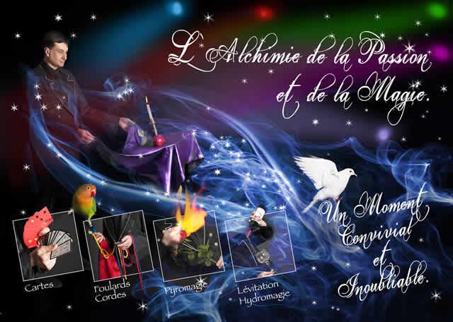 Au delà des rêves : Spécialité dans la magie des colombes