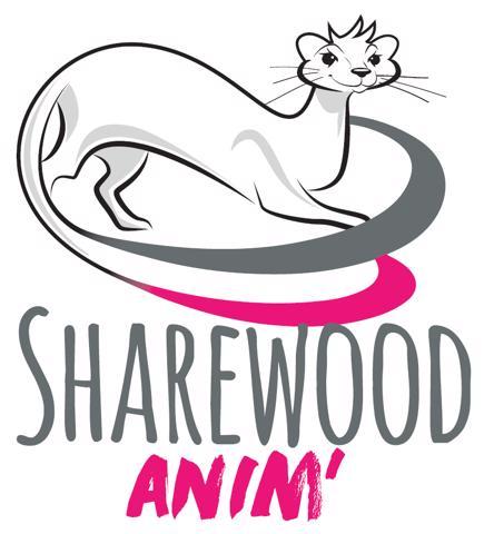 SHERWOOD ANIM' : Agence evenementielle