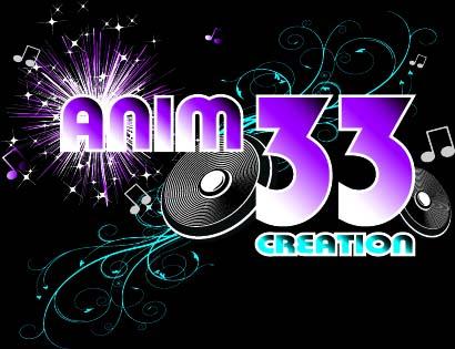 ANIM 33 Création : feux d'artifice, entreprise, mariage