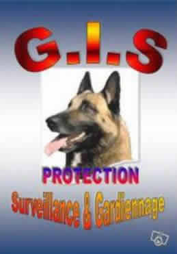 GIS Protection