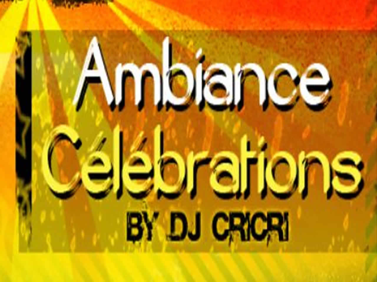 AMBIANCE CELEBRATION : Animation DJ originale