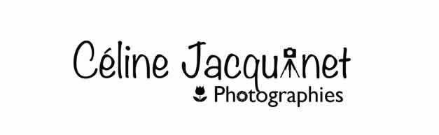 JACQUINET PHOTOGRAPHE : Excellent photographe de mariage