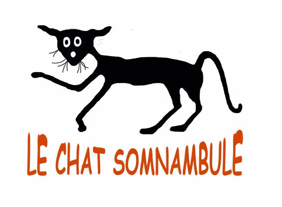 Le chat somnamuble