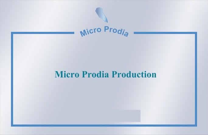 Micro Prodia : Animation/Dj  mariage, anniversaire etc.