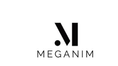 Méganim Sonorisation - Eclairage : Méganim anime toutes vos fêtes