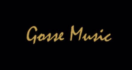 Gosse Music : Animateur événementiel et vente